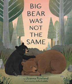 BB big bear was not the same flat